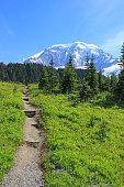 Wonderland Trail and Mt Rainer