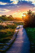 Evening rural landscape. A path in the rays of the setting sun. Sunset and sunrise.