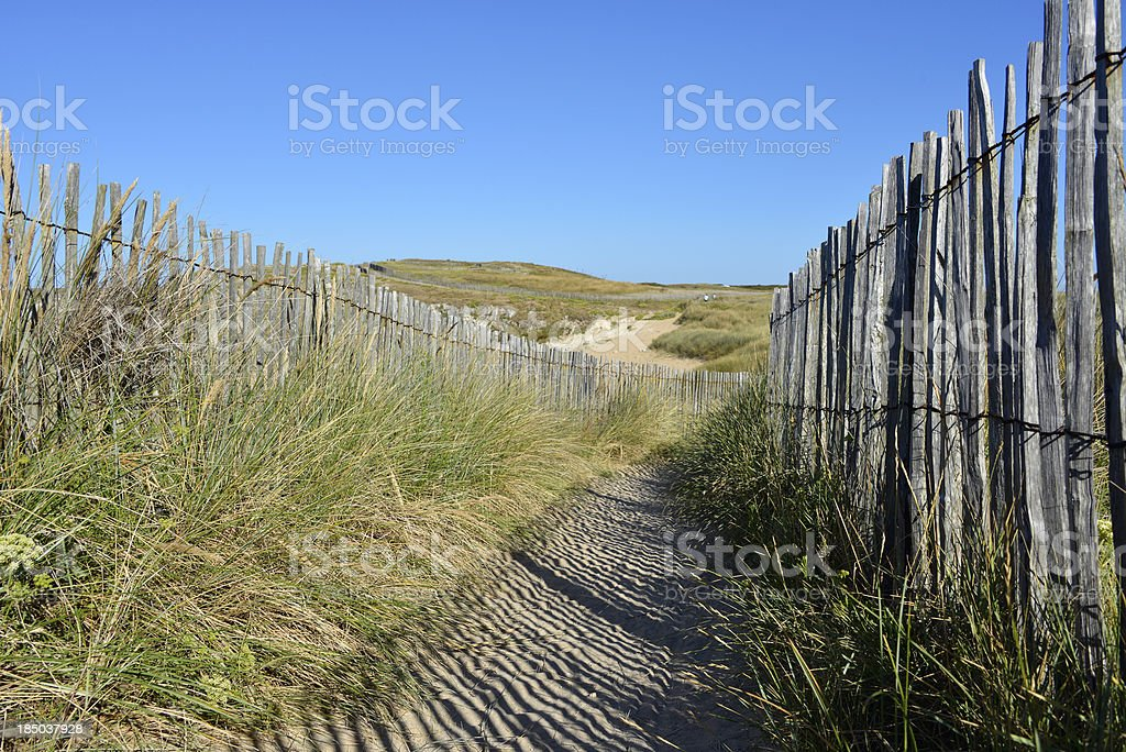 Path the dunes of Quiberon in France stock photo