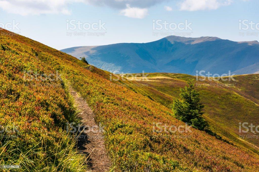 path though mountain hills and ridge stock photo