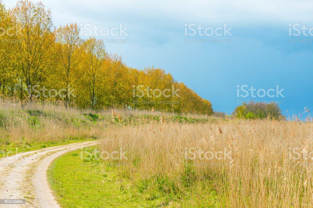 陽光下的春天, 穿過烏雲下的田野的小路 免版稅 stock photo