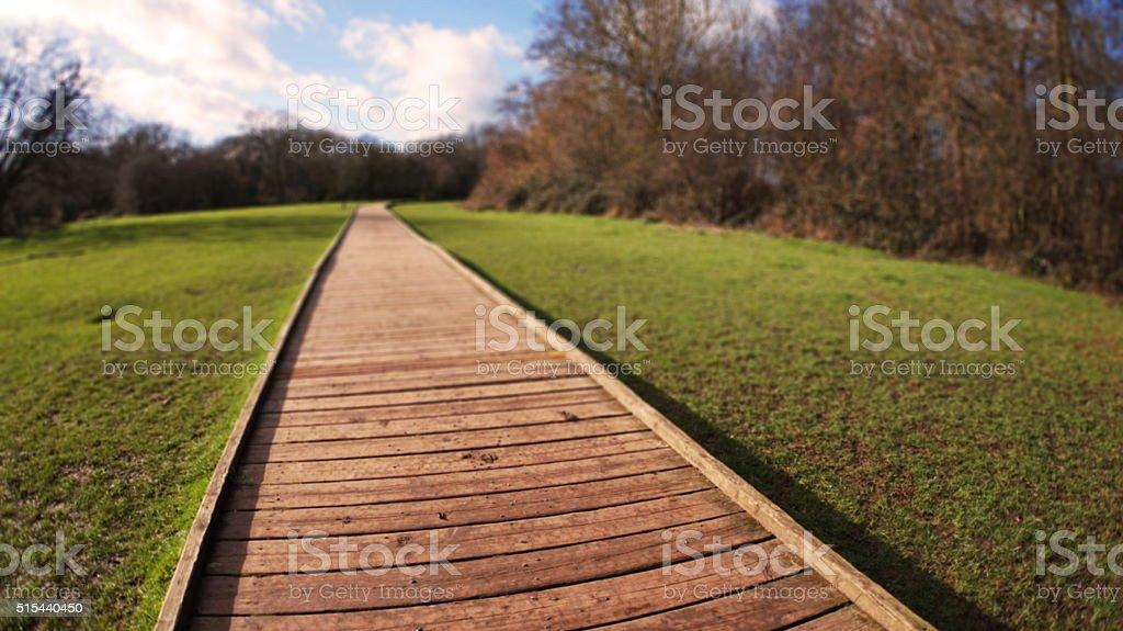 Path through a field stock photo