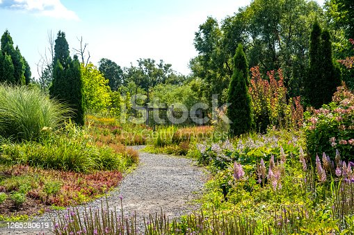 Path Through A Tranquil Manicured Garden