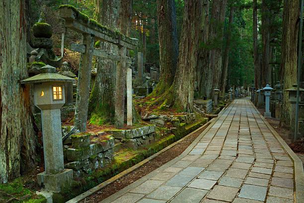 weg durch koyasan okunoin cemetery, präfektur wakayama, japan - waldfriedhof stock-fotos und bilder
