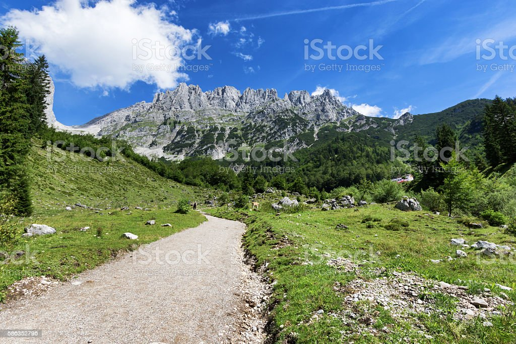 Path through summer mountain landscape. View of Wilder Kaiser, Austria stock photo