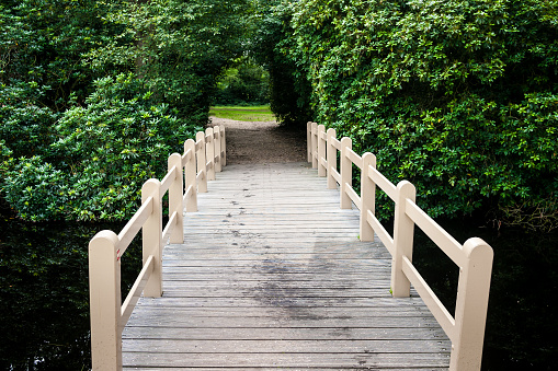 Small green natural tunnel behind wooden bridge in park