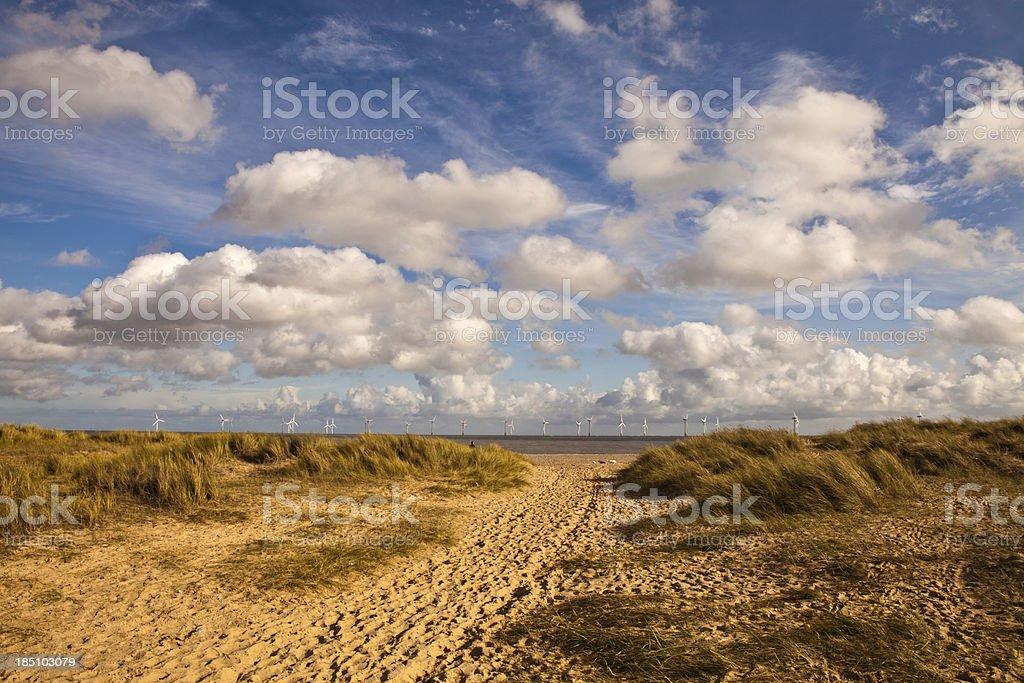 path through the dunes stock photo