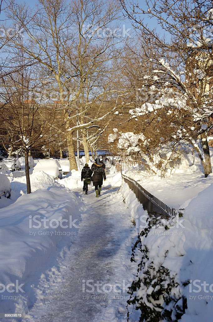 Path Through The Snow royalty-free stock photo