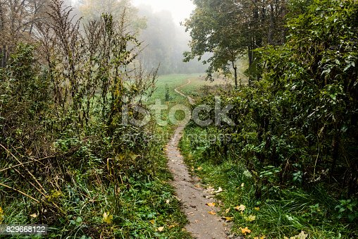 istock path through the valley in the fog 829668122
