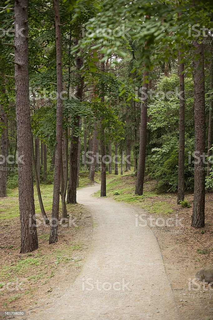 Path through the woods, Palanga, Lithuania royalty-free stock photo