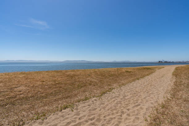 Path to Beach overlooking San Francisco Bay Clear blue day at the Robert W. Crown Memorial State Beach in Alameda, California. City of San Francisco seen in the distance. alameda california stock pictures, royalty-free photos & images