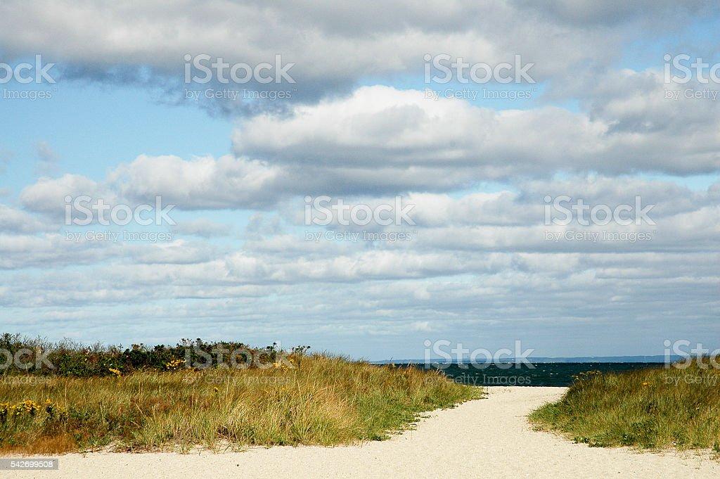 Path to beach stock photo