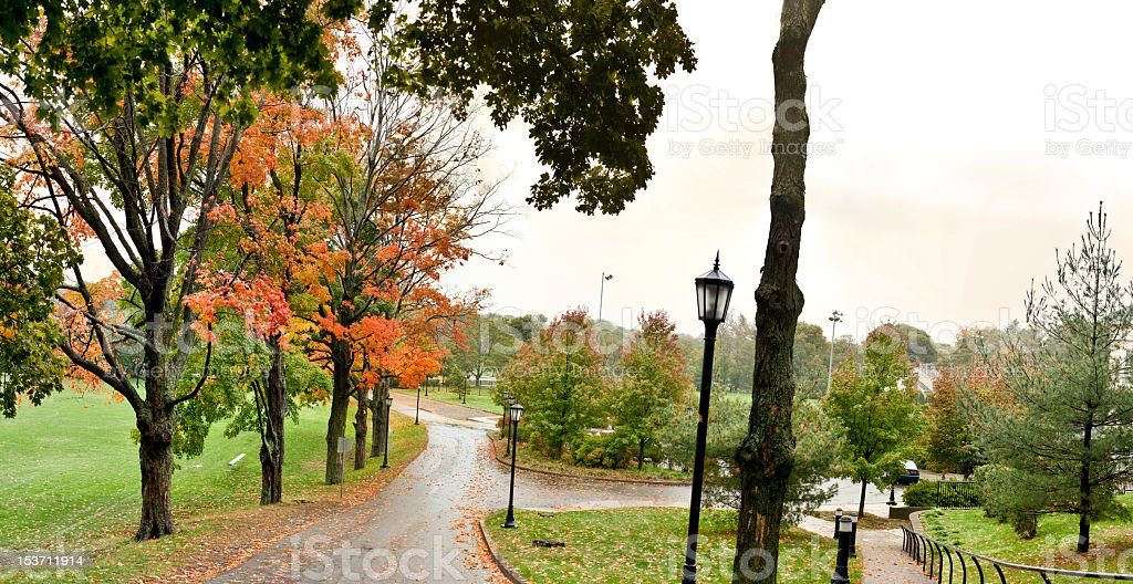 Path To Fall stock photo