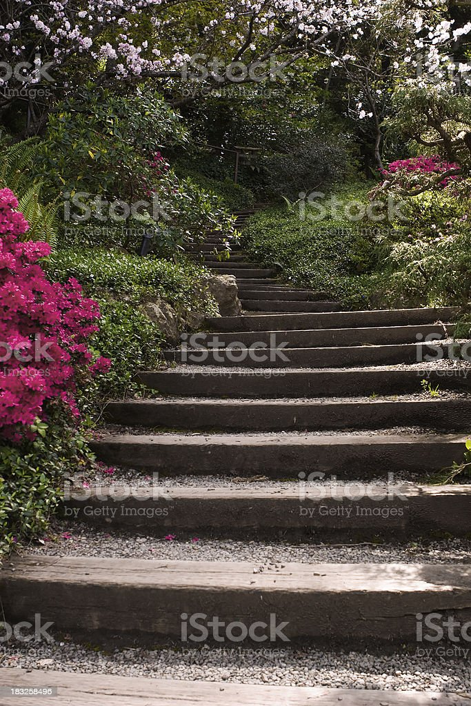 Path to heaven royalty-free stock photo