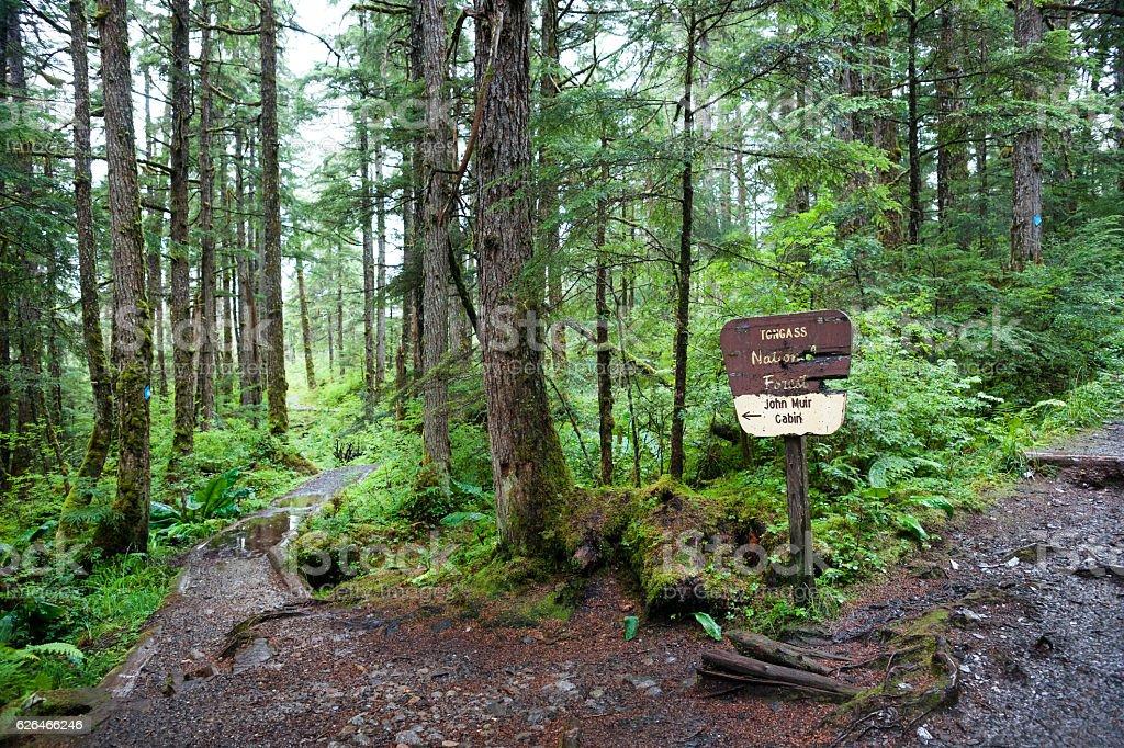 Path to John Muir's cabin stock photo