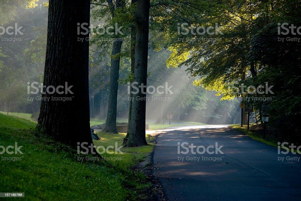 Path To Light royalty-free stock photo