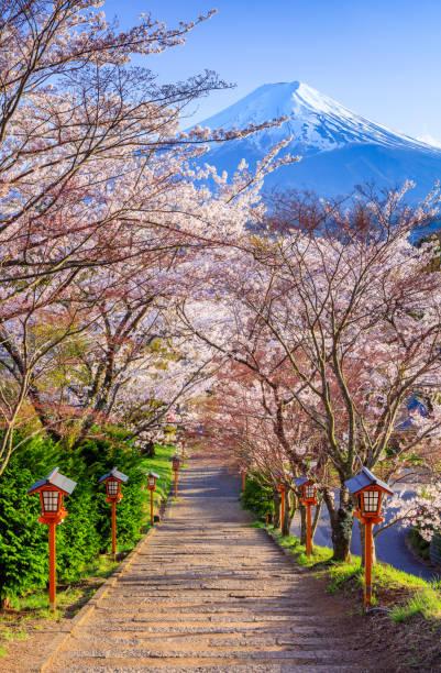 Weg zum Mt. Fuji im Frühjahr, Arakura sich Schrein, Fujiyoshida, Japan – Foto