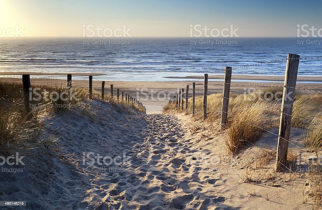 path to North sea beach in gold sunshine stock photo