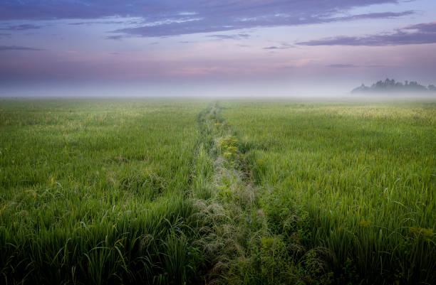 Path to nowhere, India stock photo
