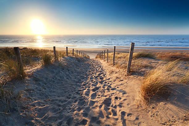 path to sand beach in North sea foto