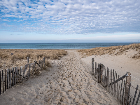 Path to the Atlantic Shore, Race Point, Provincetown