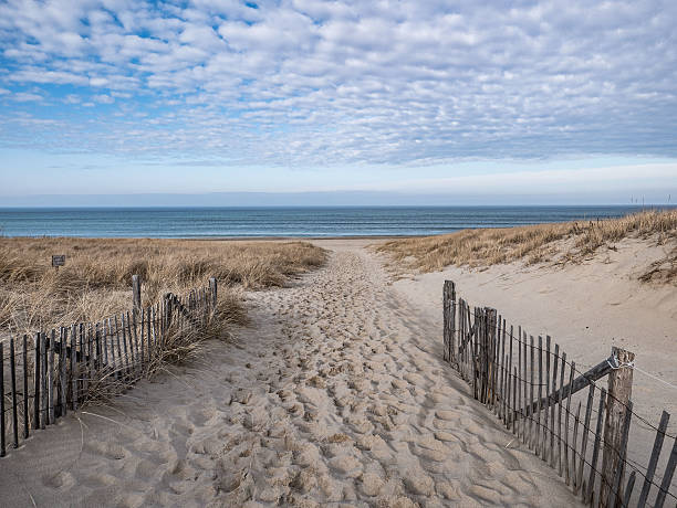 Path to the Atlantic Shore, Race Point, Provincetown A sandy footpath leads to the Atlantic shore through the dunes of Race Point in the Province lands, Provincetown, Massachusetts. cape cod stock pictures, royalty-free photos & images
