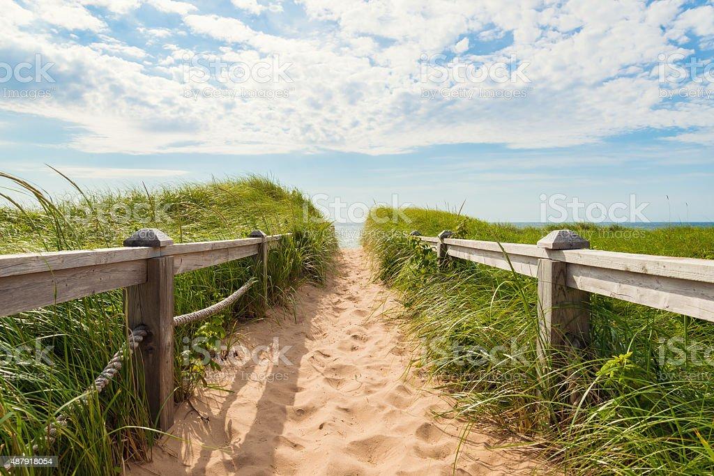 Path to the beach at Basin Head stock photo