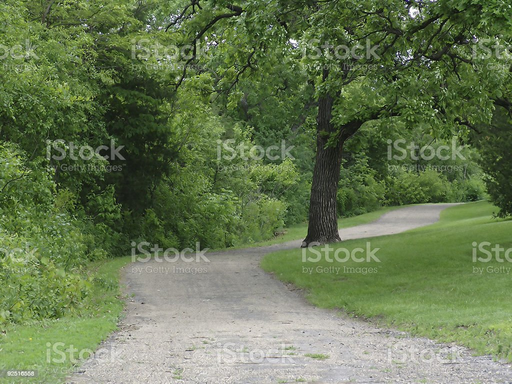 Path to the river royalty-free stock photo