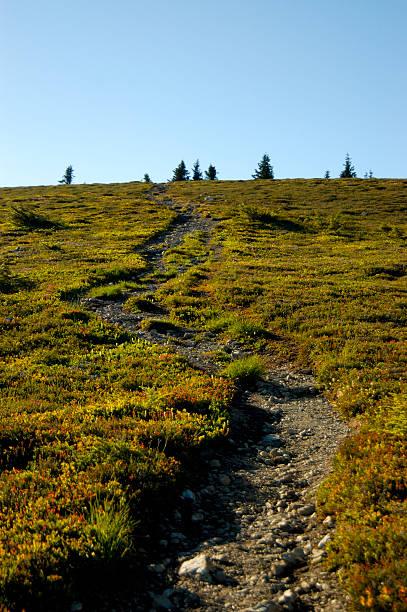 path to the sky, hiking stock photo