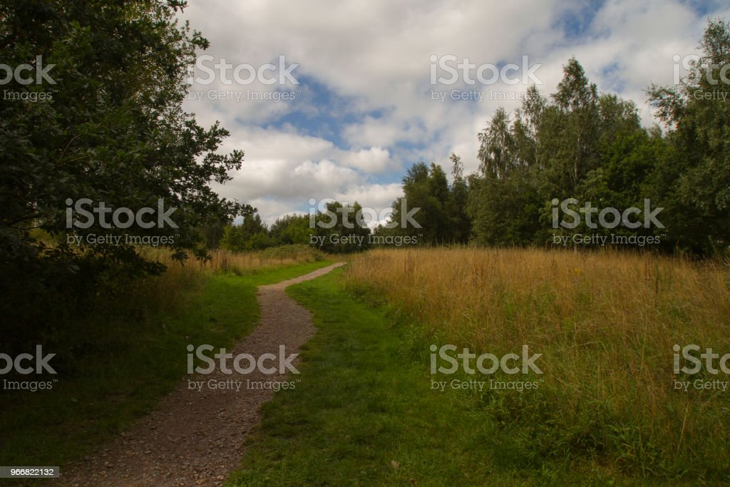 Path up a rural hill in summer stock photo