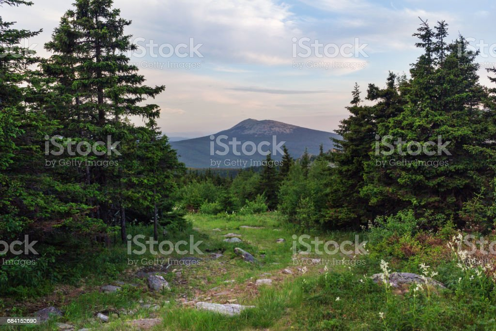 Paths between forests and mountains of the Southern Urals. Summer in the mountains. View from the mountains. The nature of the Southern Urals. zbiór zdjęć royalty-free