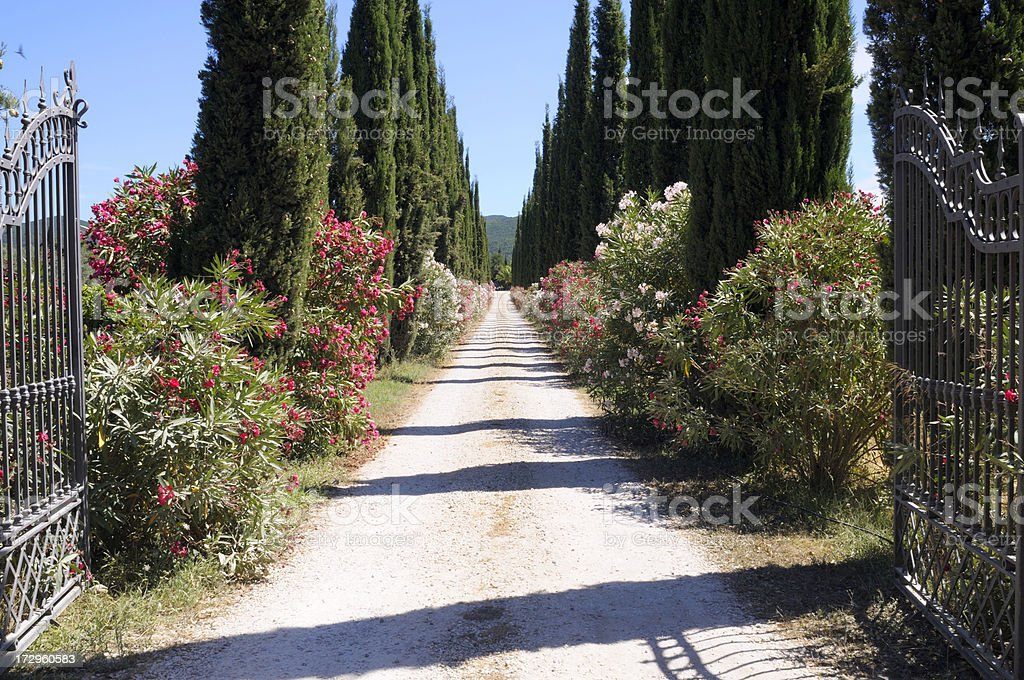 Pathway and gate in tuscany royalty-free stock photo