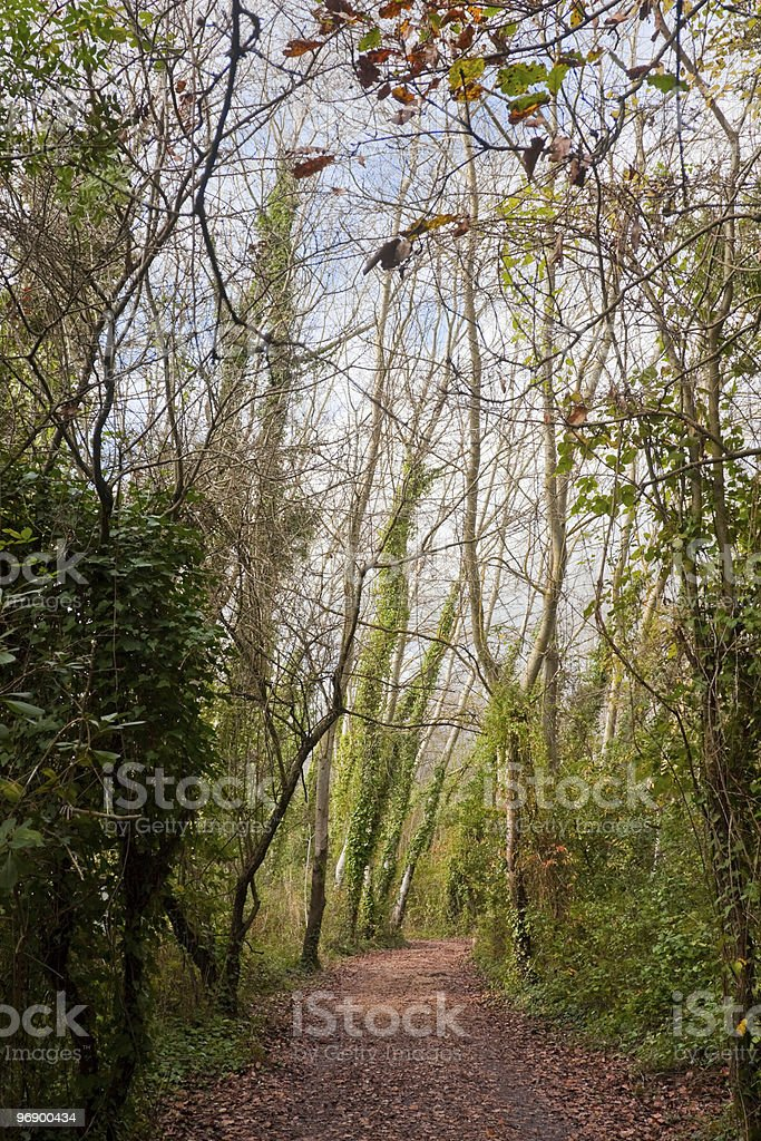 Pathway at Minturno royalty-free stock photo