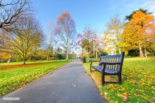 Pathway bench in a Beautiful Public Park, London, UK
