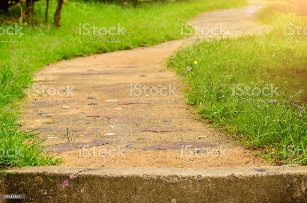 traject in tuin - Royalty-free Buitenopname Stockfoto