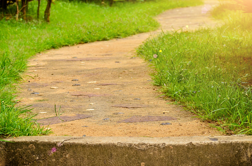Traject In Tuin Stockfoto en meer beelden van Buitenopname