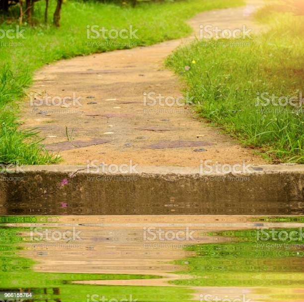 Pathway In Garden - Fotografias de stock e mais imagens de Ao Ar Livre