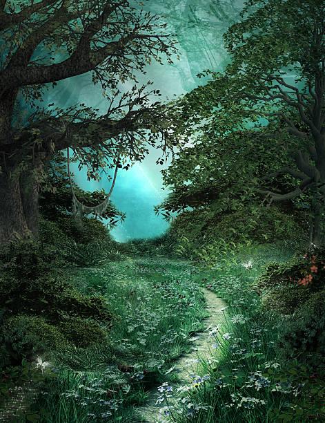 pfad in der green magic forest - märchenillustrationen stock-fotos und bilder