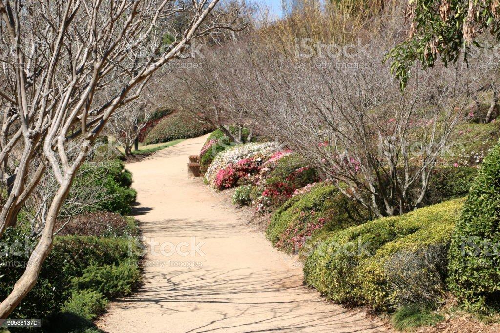 Pathway through Ornamental Japanese Garden royalty-free stock photo