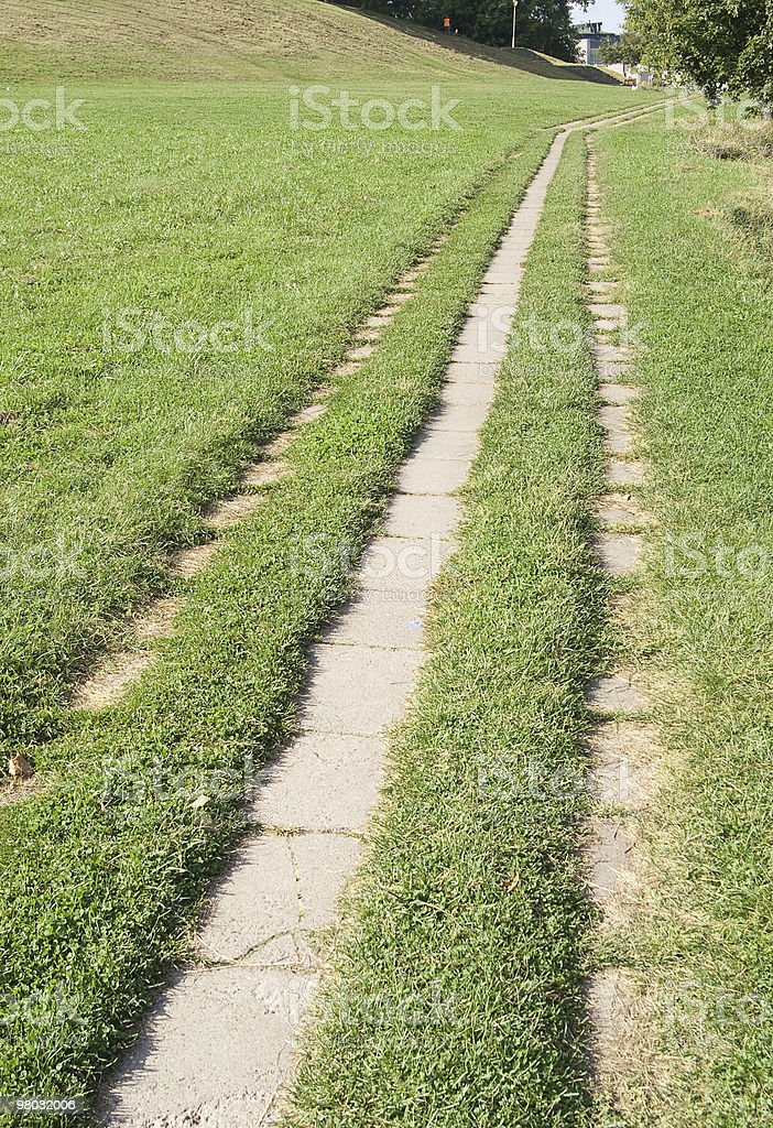 Pathway through the grass royalty-free stock photo