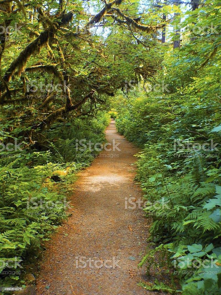 Pathway to nowhere stock photo