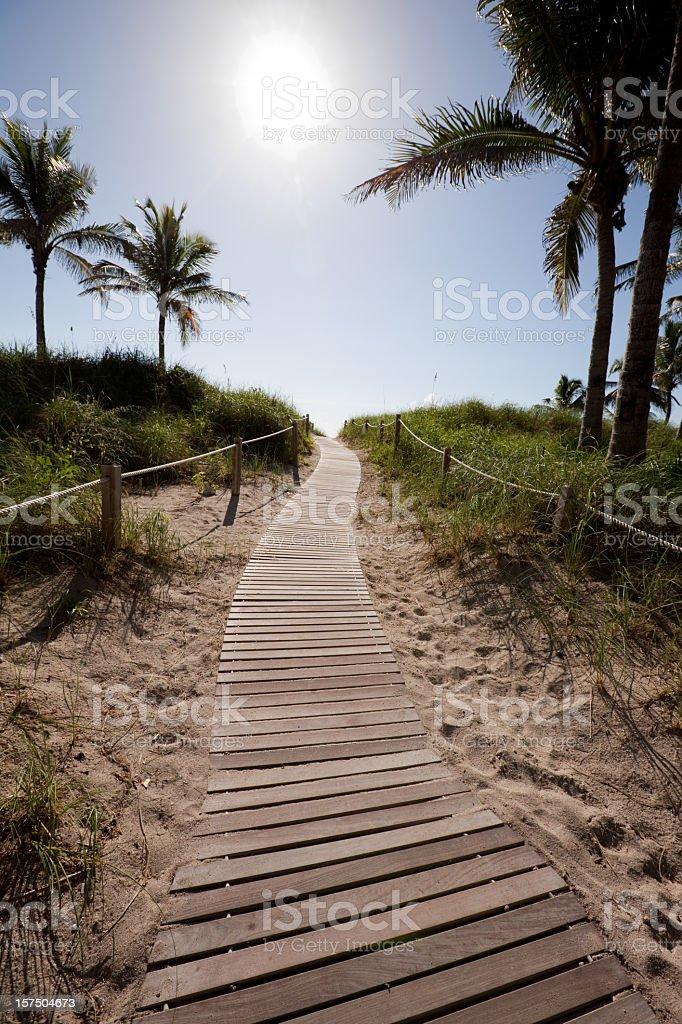 pathway to the beach, miami royalty-free stock photo