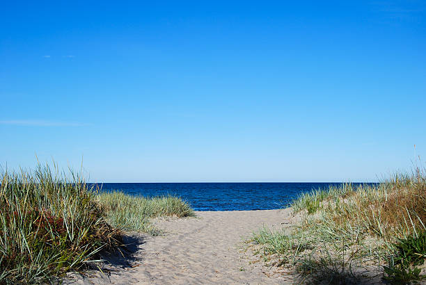 Pathway to the beach of Baltic Sea at  Oland stock photo