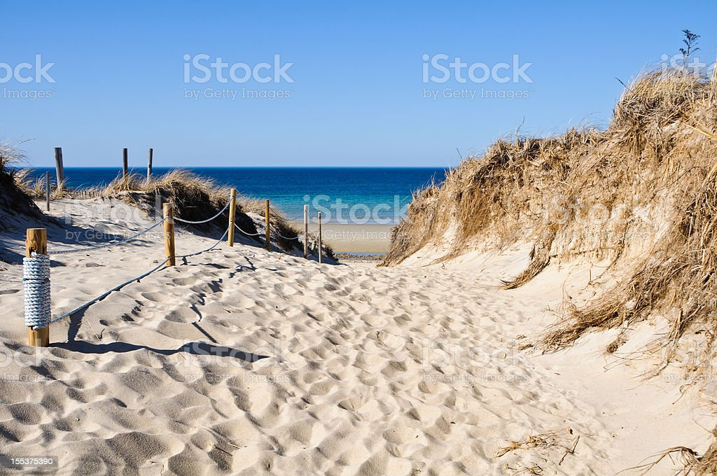 Pathway to the Beach royalty-free stock photo