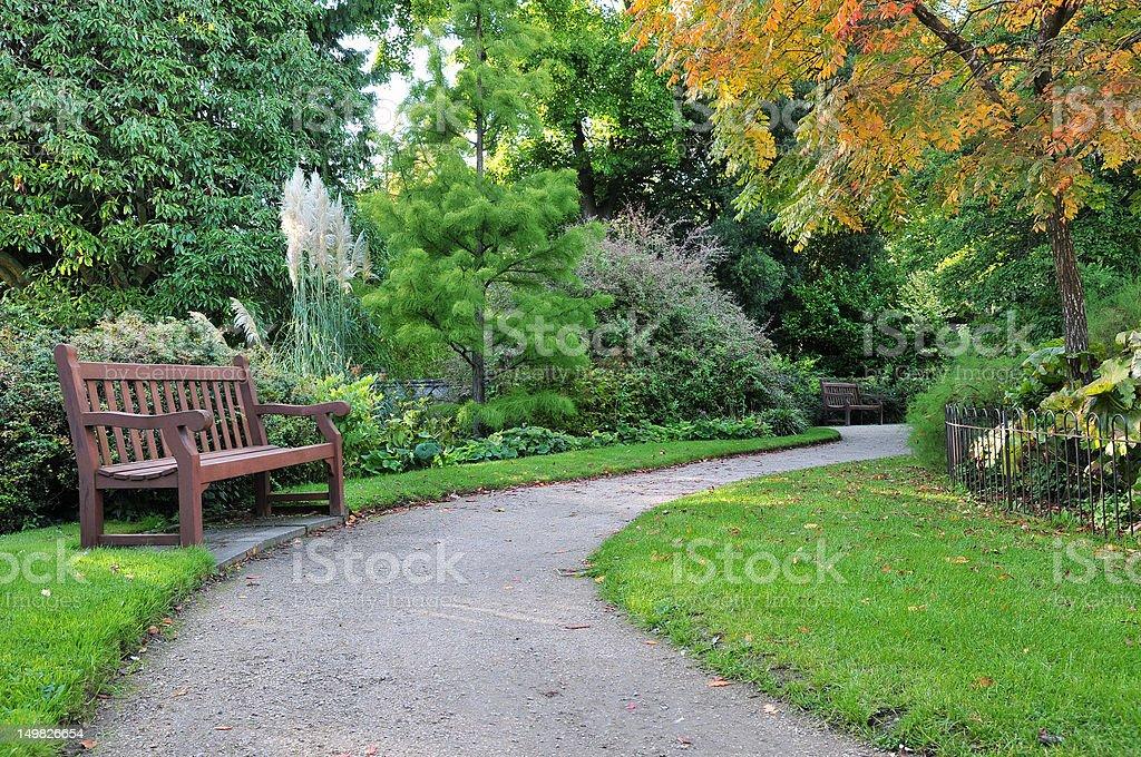 Pathway Winding through a Green Garden stock photo