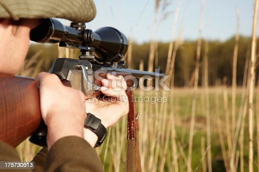 A game hunter looking through the reeds with his sniper rifle