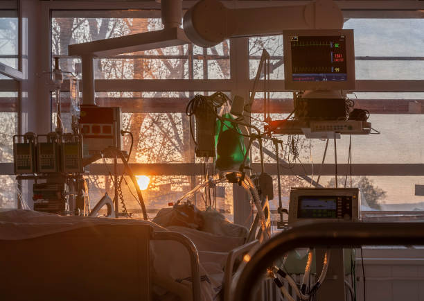 Patient connected to medical ventilator, and to monitor in ICU in hospital,  the windows sun rises. stock photo