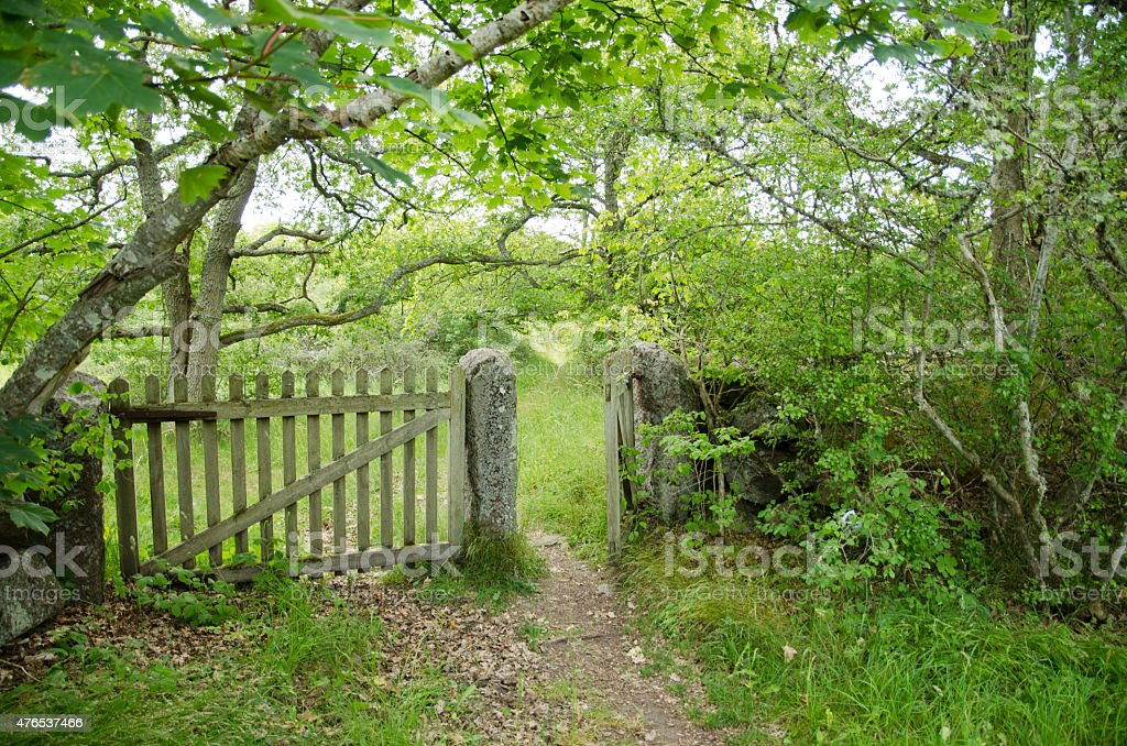 Patinated old wooden gate stock photo