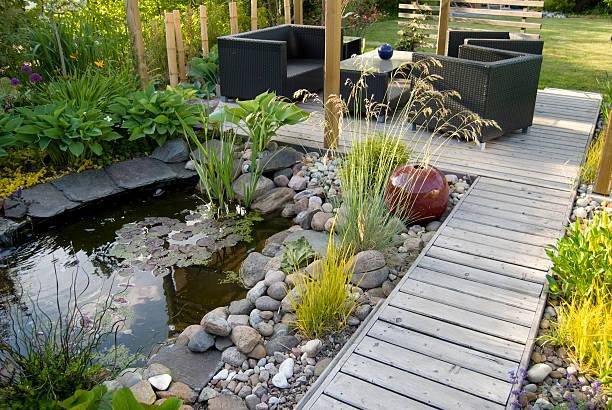 patio i staw w po południu słonecznie - staw woda stojąca zdjęcia i obrazy z banku zdjęć