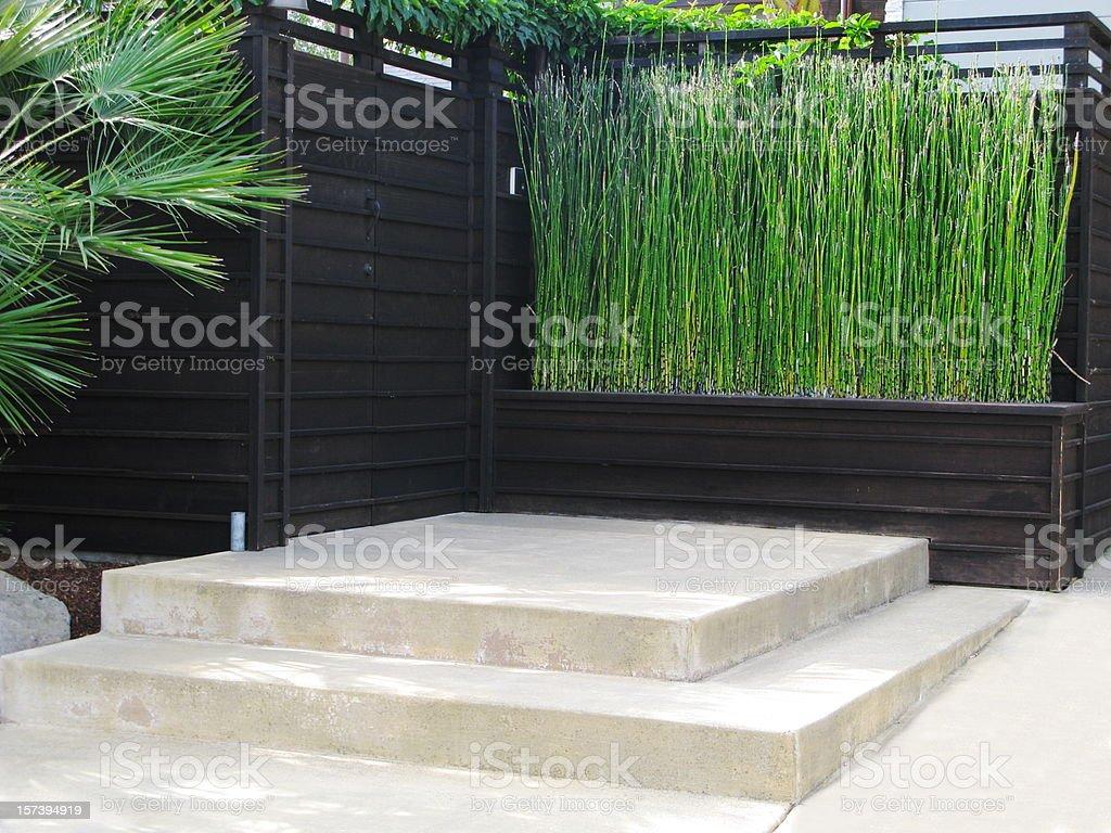 Patio Bamboo Japanese stock photo